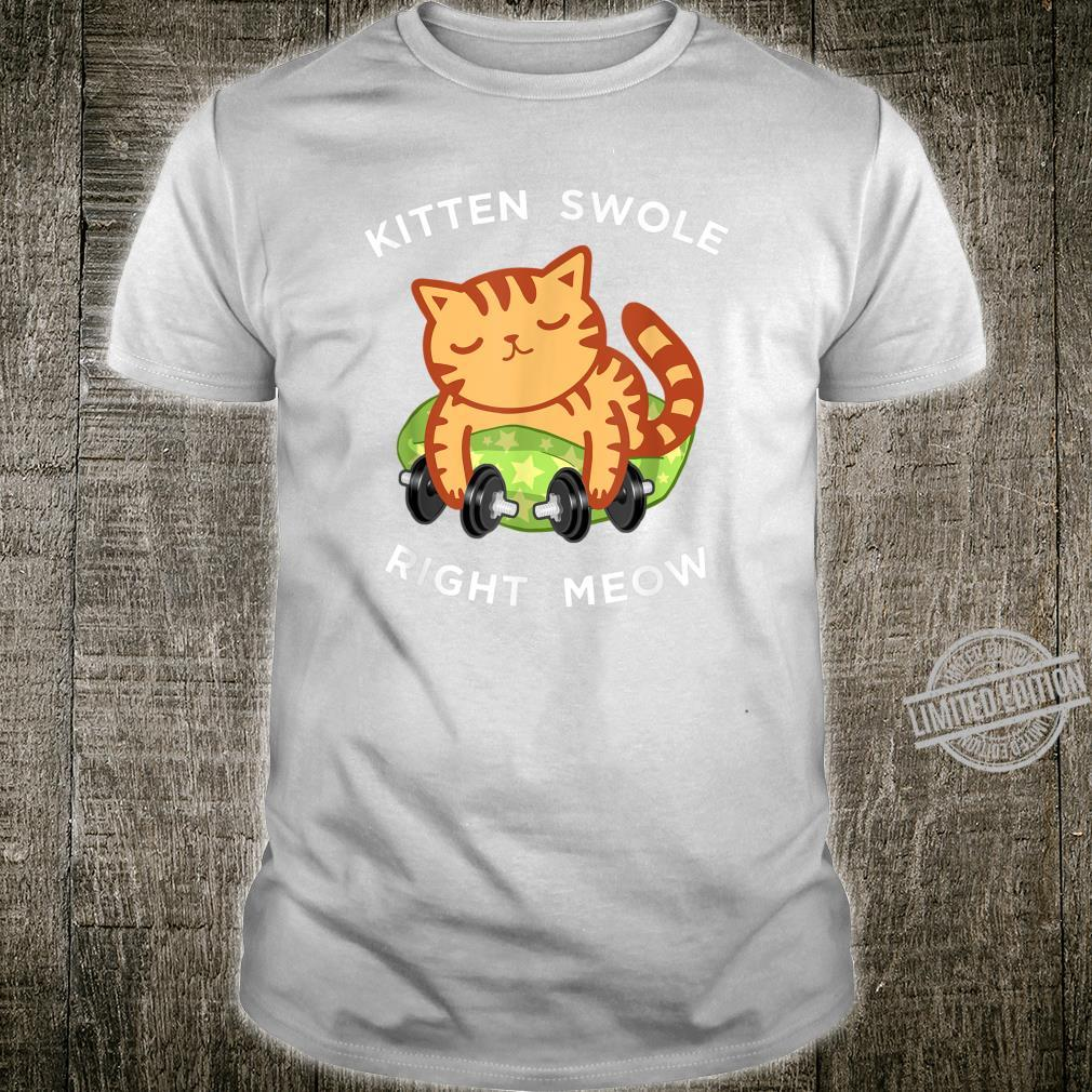 Funny Lifting Right Meow Cat Shirt, Workout Gym Kitty Shirt