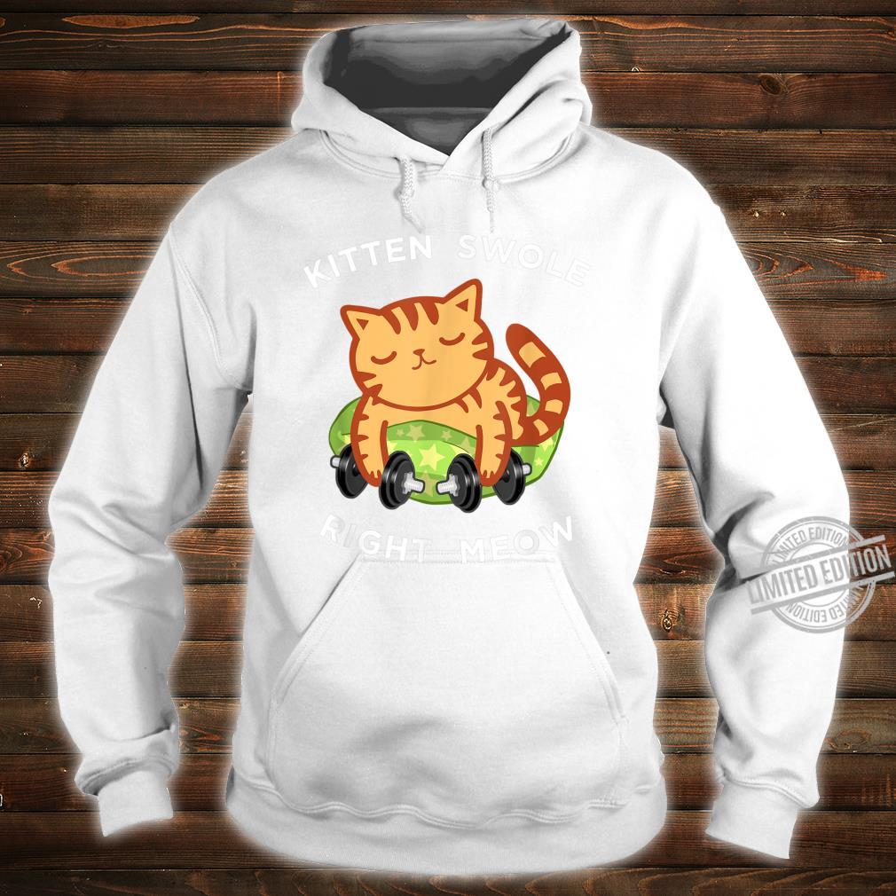 Funny Lifting Right Meow Cat Shirt, Workout Gym Kitty Shirt hoodie