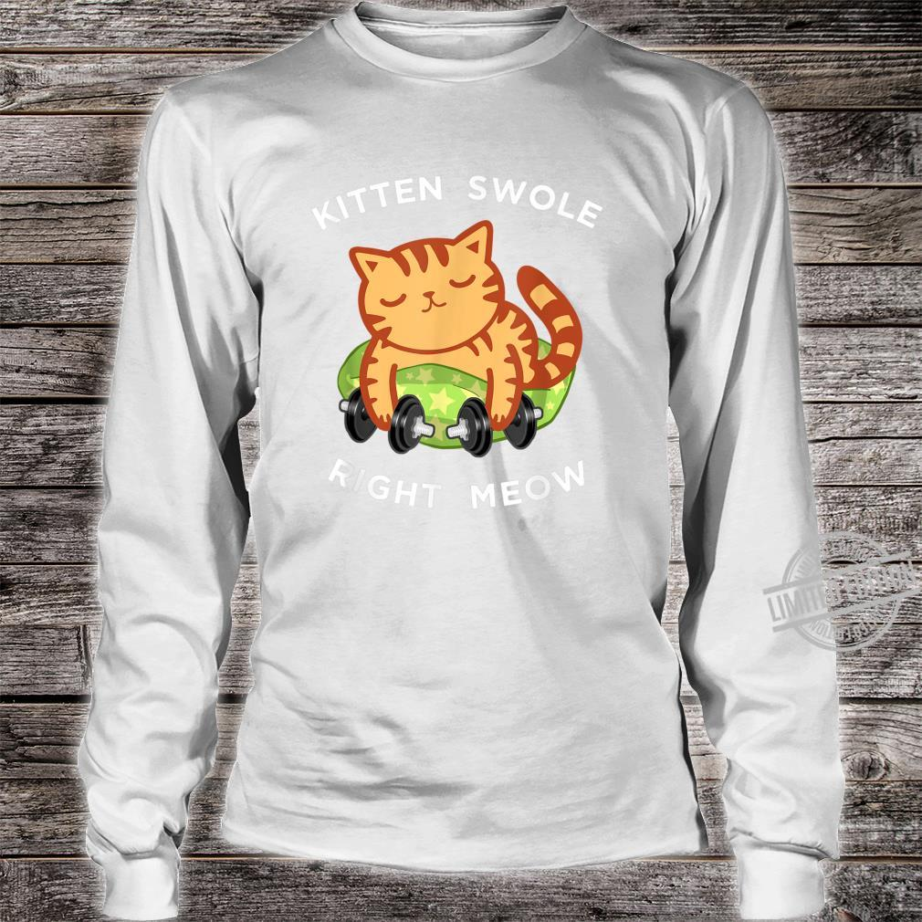 Funny Lifting Right Meow Cat Shirt, Workout Gym Kitty Shirt long sleeved