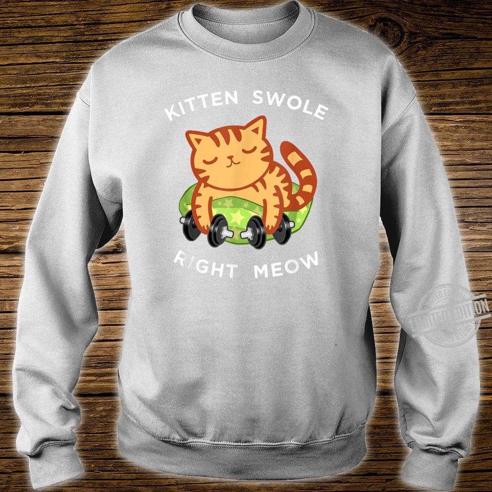 Funny Lifting Right Meow Cat Shirt, Workout Gym Kitty Shirt sweater